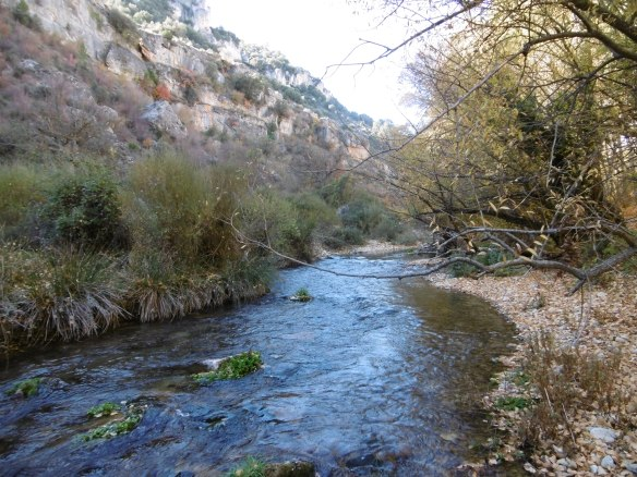 8.1 Río Zumeta en Santiago de la Espada (22)